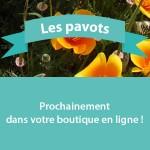 produit_pavots