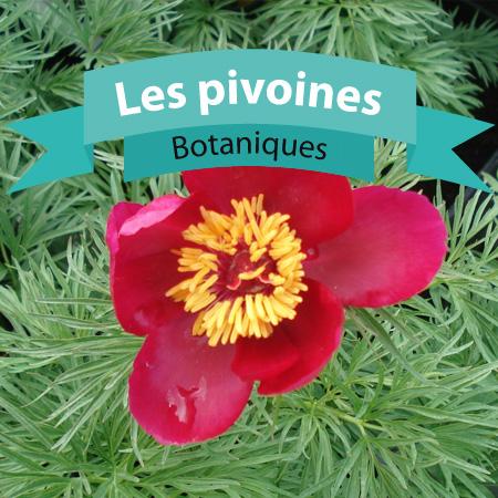botaniques